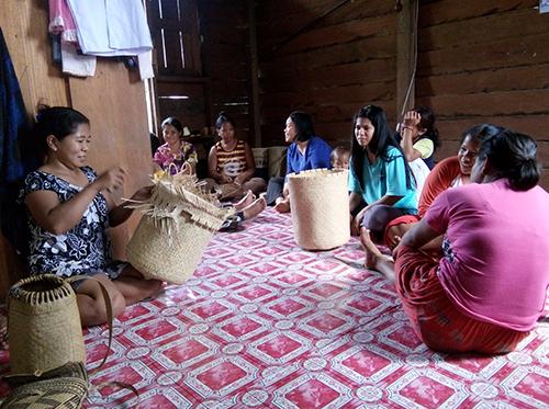 Membangun Usaha Masyarakat dan Perluasan Jaringan Pasar Berbasis Pemanfaatan Berkelanjutan Hasil Hutan Bukan Kayu (HHBK) di Kabupaten Berau, Provinsi Kalimantan Timur